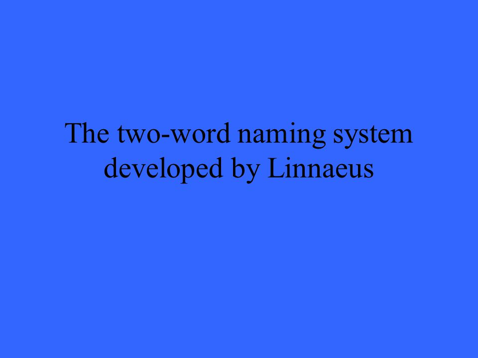 The two-word naming system developed by Linnaeus