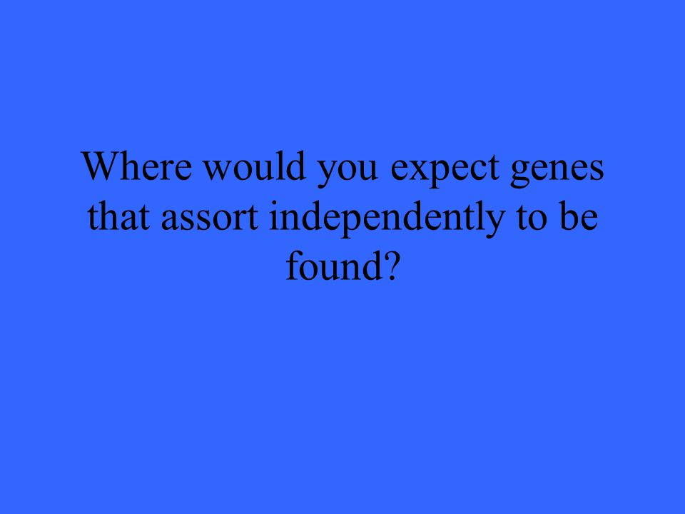 Where would you expect genes that assort independently to be found?