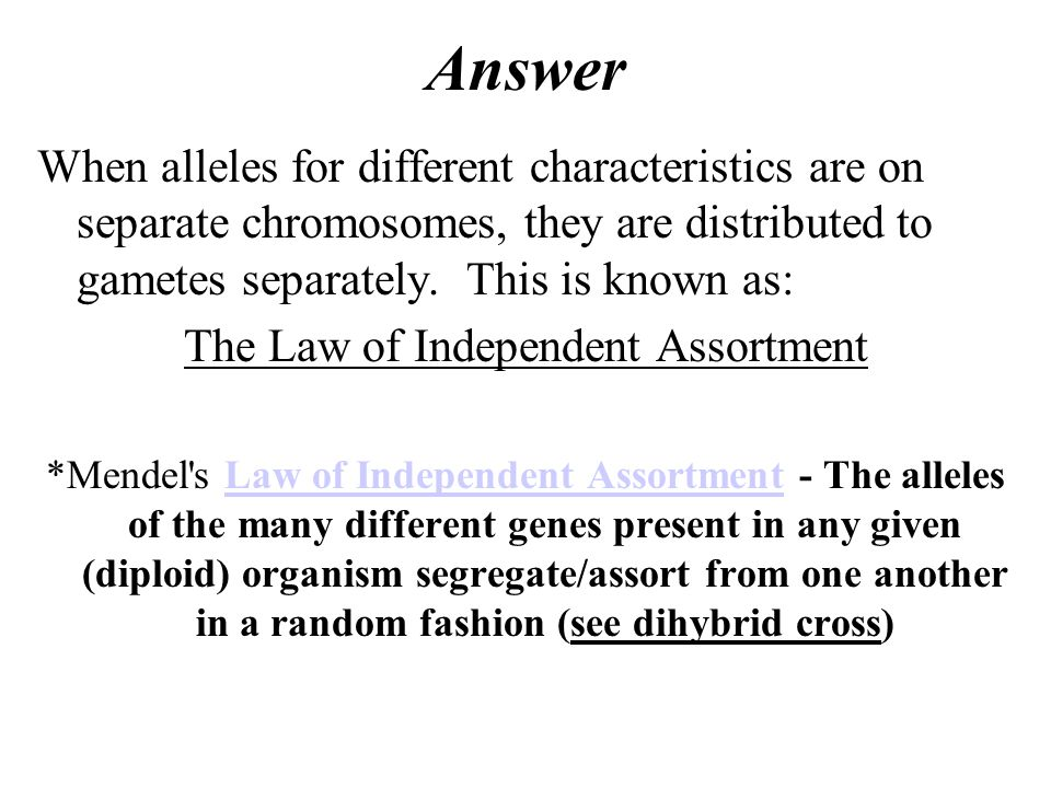 Answer When alleles for different characteristics are on separate chromosomes, they are distributed to gametes separately.