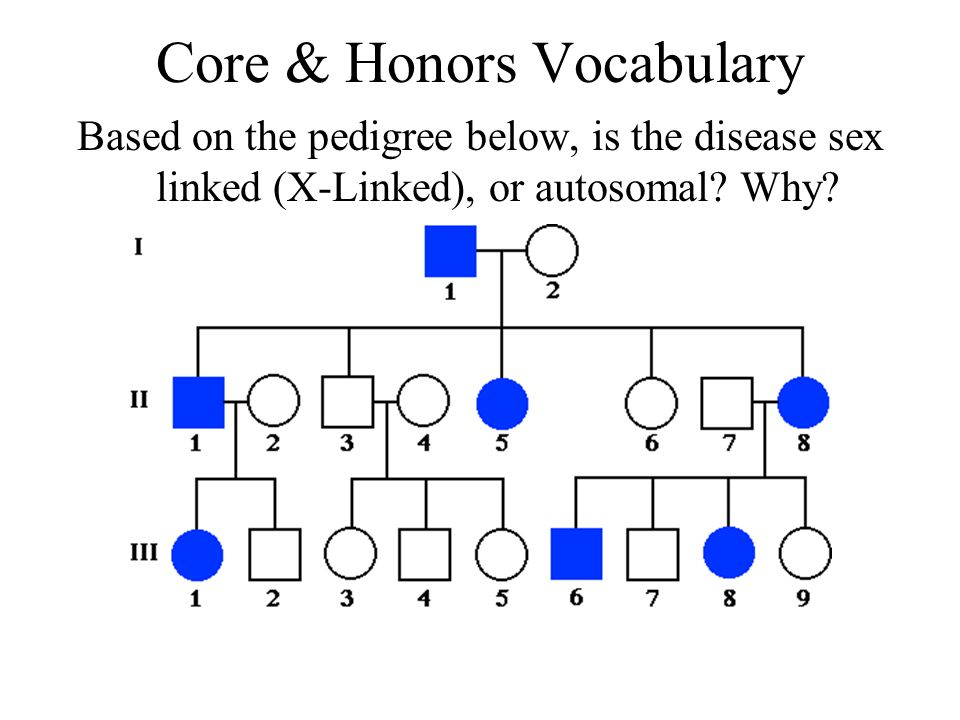Answer When two alleles for a gene cause a blended phenotype, this is called: Incomplete Dominance