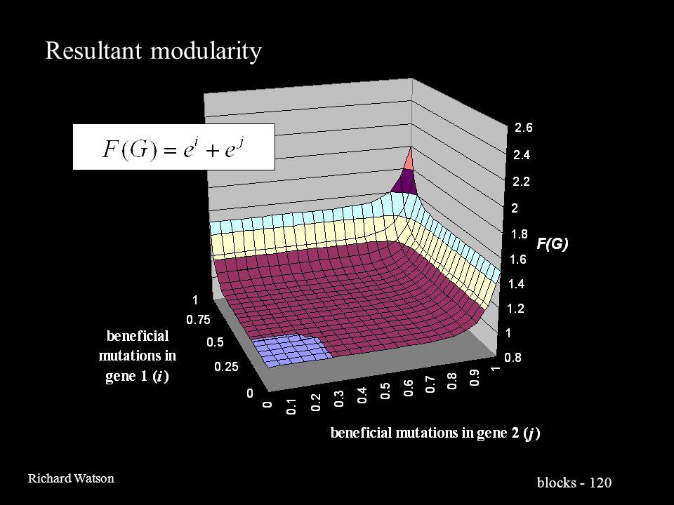 blocks - 120 Richard Watson Resultant modularity