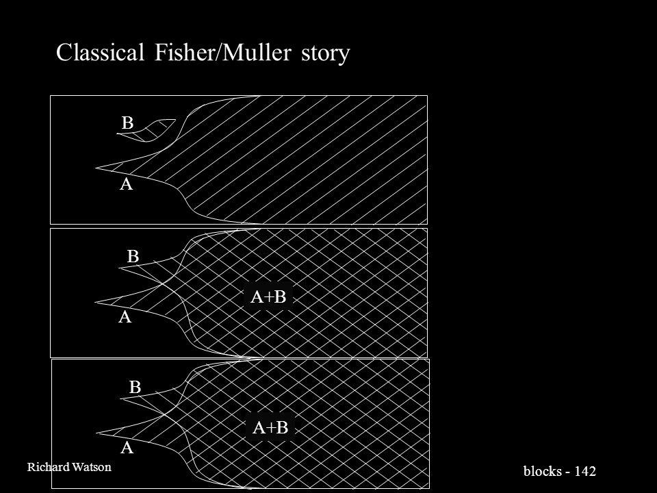 blocks - 142 Richard Watson Classical Fisher/Muller story A B A B A+B A B