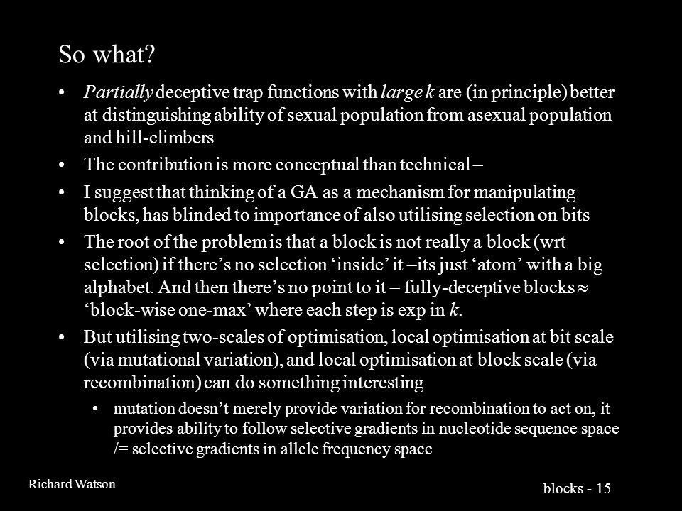 blocks - 15 Richard Watson So what.