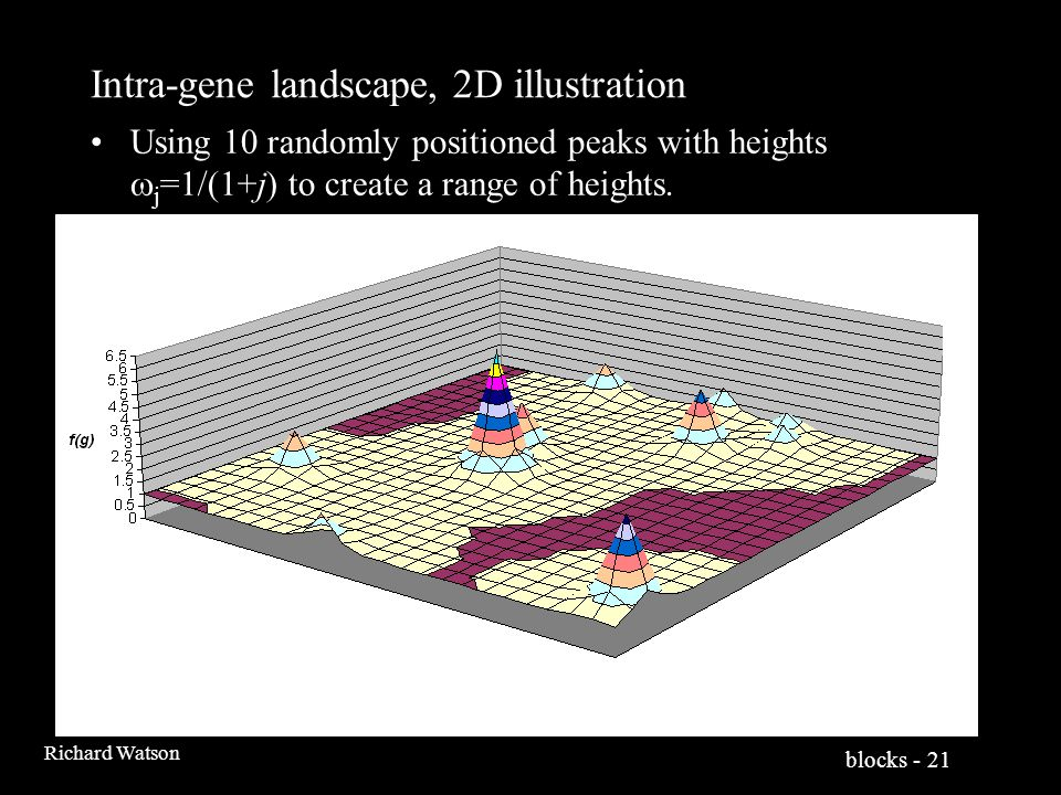 blocks - 21 Richard Watson Intra-gene landscape, 2D illustration Using 10 randomly positioned peaks with heights  j =1/(1+j) to create a range of heights.