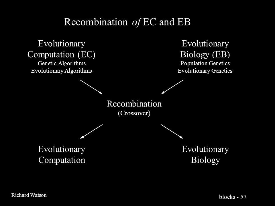 blocks - 57 Richard Watson Recombination of EC and EB Evolutionary Computation (EC) Genetic Algorithms Evolutionary Algorithms Evolutionary Biology (EB) Population Genetics Evolutionary Genetics Recombination (Crossover) Evolutionary Computation Evolutionary Biology