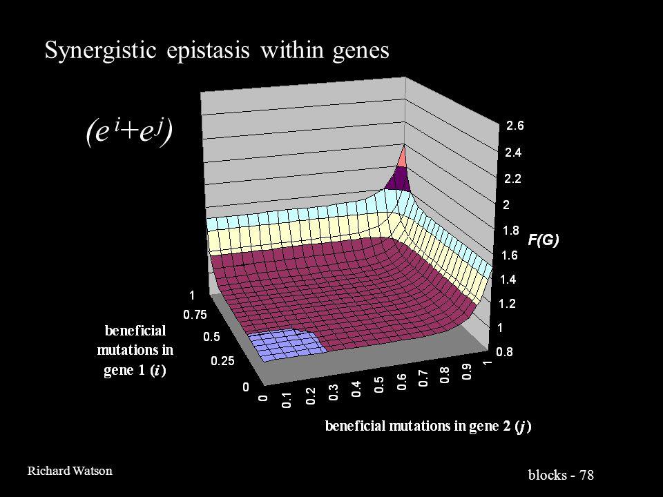 blocks - 78 Richard Watson Synergistic epistasis within genes (e i +e j )