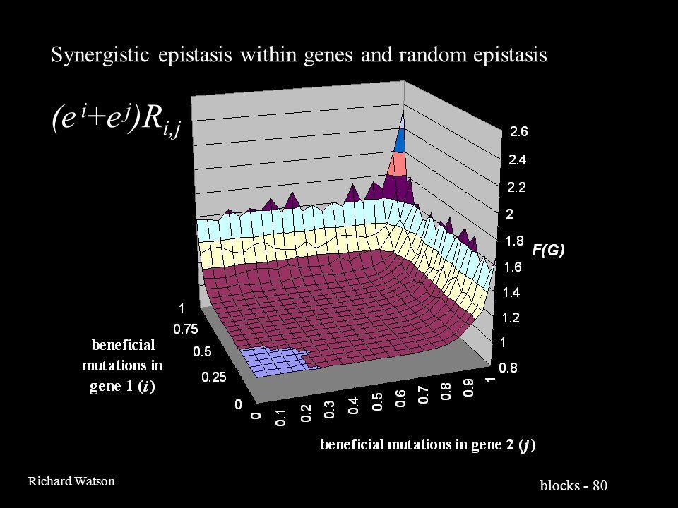 blocks - 80 Richard Watson Synergistic epistasis within genes and random epistasis (e i +e j )R i,j