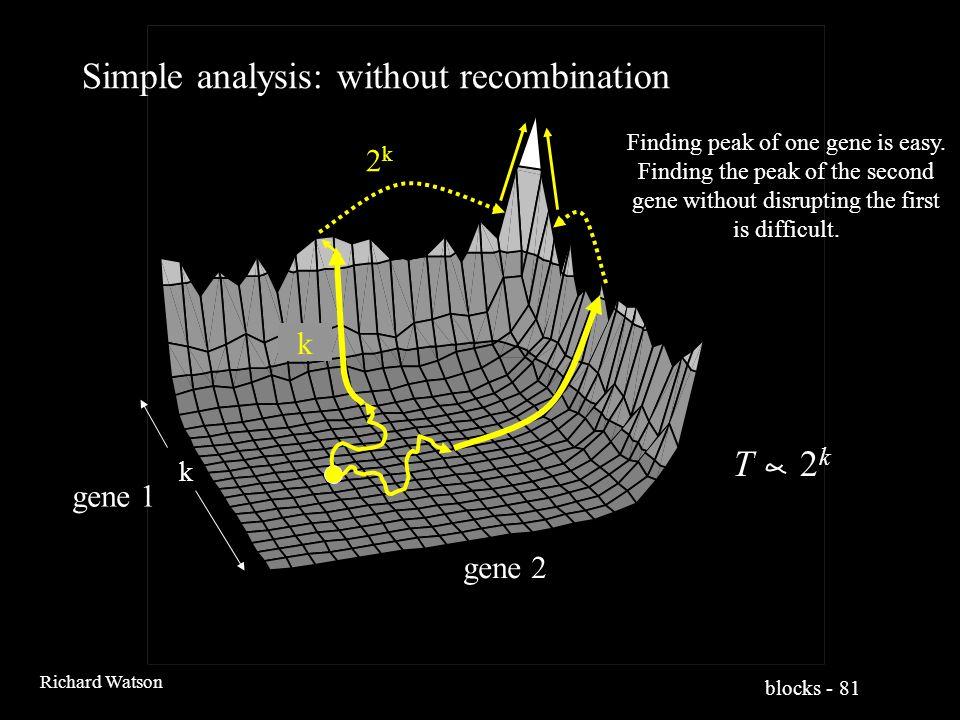blocks - 81 Richard Watson 2k2k Simple analysis: without recombination k k gene 1 gene 2 Finding peak of one gene is easy.