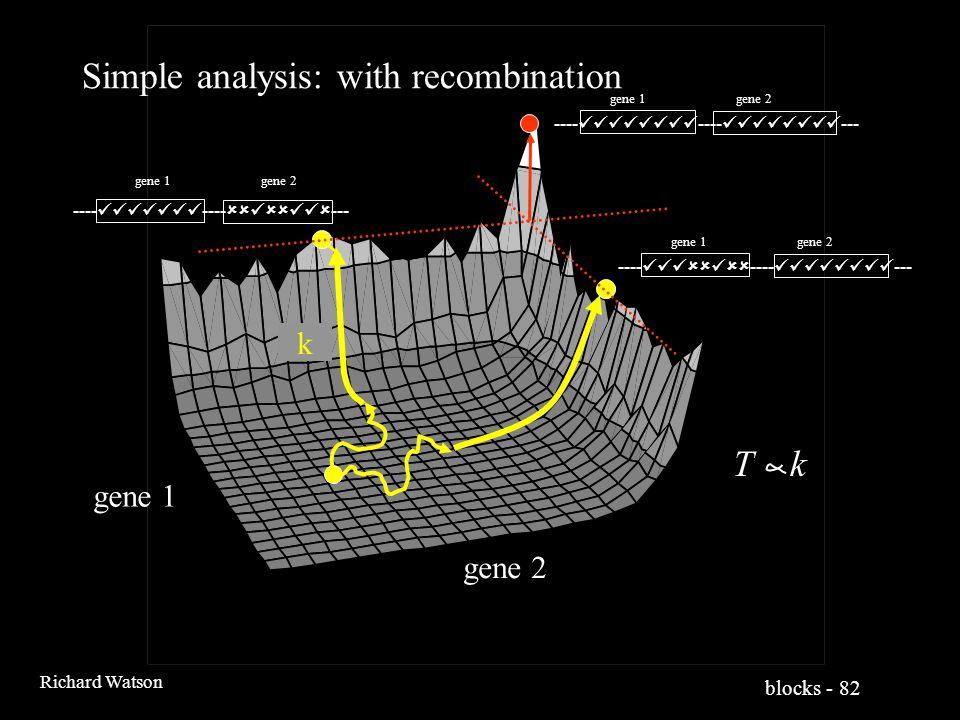 blocks - 82 Richard Watson Simple analysis: with recombination k gene 1 gene 2 ---- ----  --- gene 1 gene 2 ----  ---- --- gene 1 gene 2 ---- ---- --- gene 1 gene 2 T k