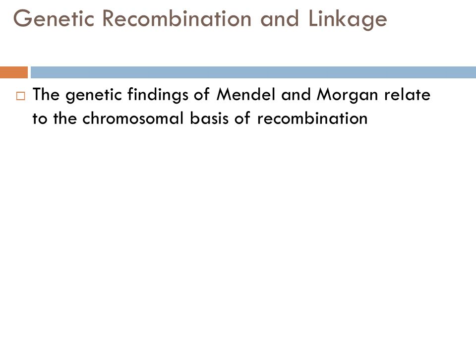 Genetic Recombination and Linkage  The genetic findings of Mendel and Morgan relate to the chromosomal basis of recombination