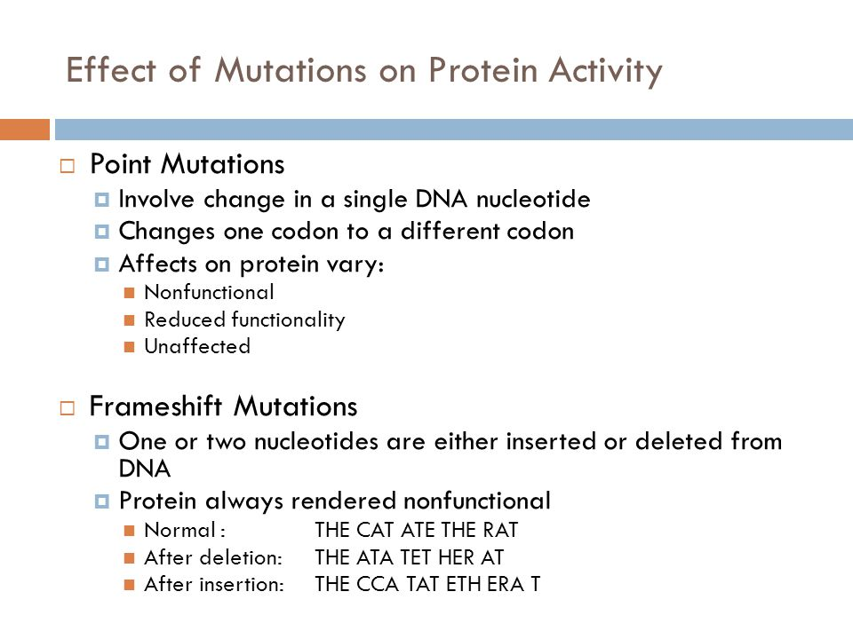 Effect of Mutations on Protein Activity  Point Mutations  Involve change in a single DNA nucleotide  Changes one codon to a different codon  Affects on protein vary: Nonfunctional Reduced functionality Unaffected  Frameshift Mutations  One or two nucleotides are either inserted or deleted from DNA  Protein always rendered nonfunctional Normal :THE CAT ATE THE RAT After deletion:THE ATA TET HER AT After insertion:THE CCA TAT ETH ERA T