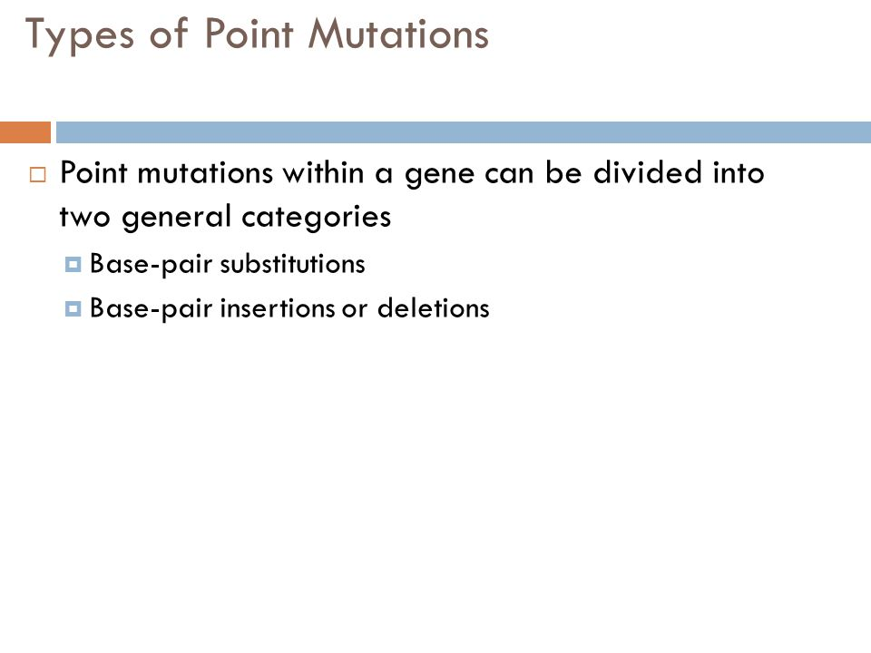 Types of Point Mutations  Point mutations within a gene can be divided into two general categories  Base-pair substitutions  Base-pair insertions o
