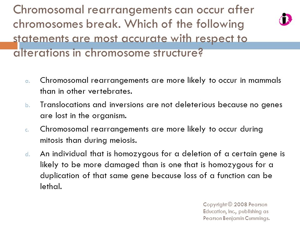 Copyright © 2008 Pearson Education, Inc., publishing as Pearson Benjamin Cummings. Chromosomal rearrangements can occur after chromosomes break. Which