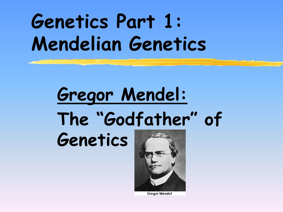Genetics Part 1: Mendelian Genetics Gregor Mendel: The Godfather of Genetics