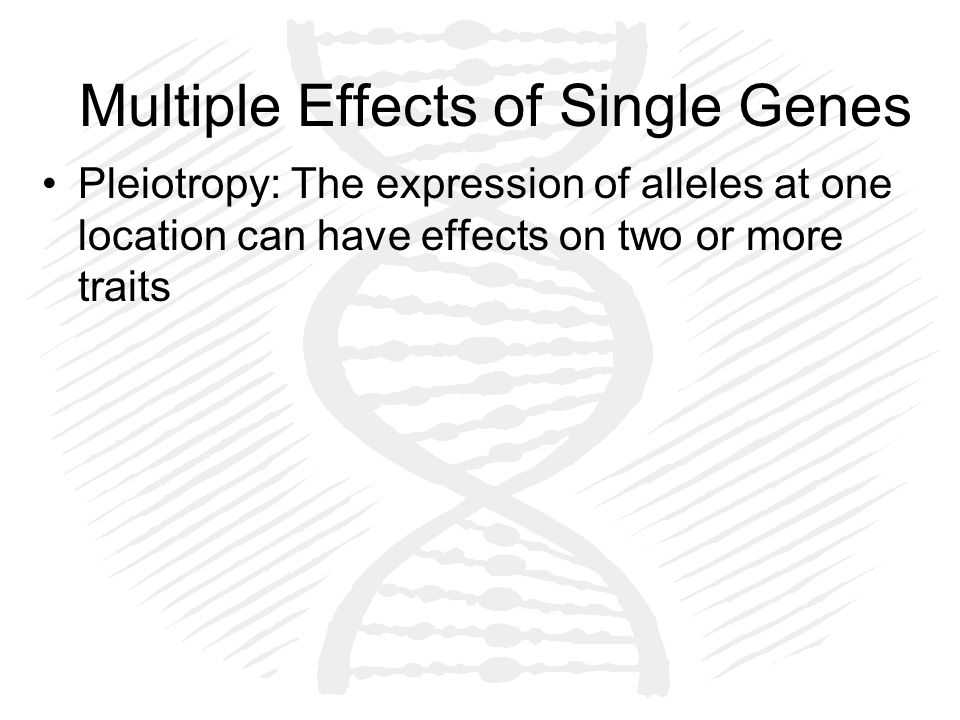 Multiple Effects of Single Genes Pleiotropy: The expression of alleles at one location can have effects on two or more traits