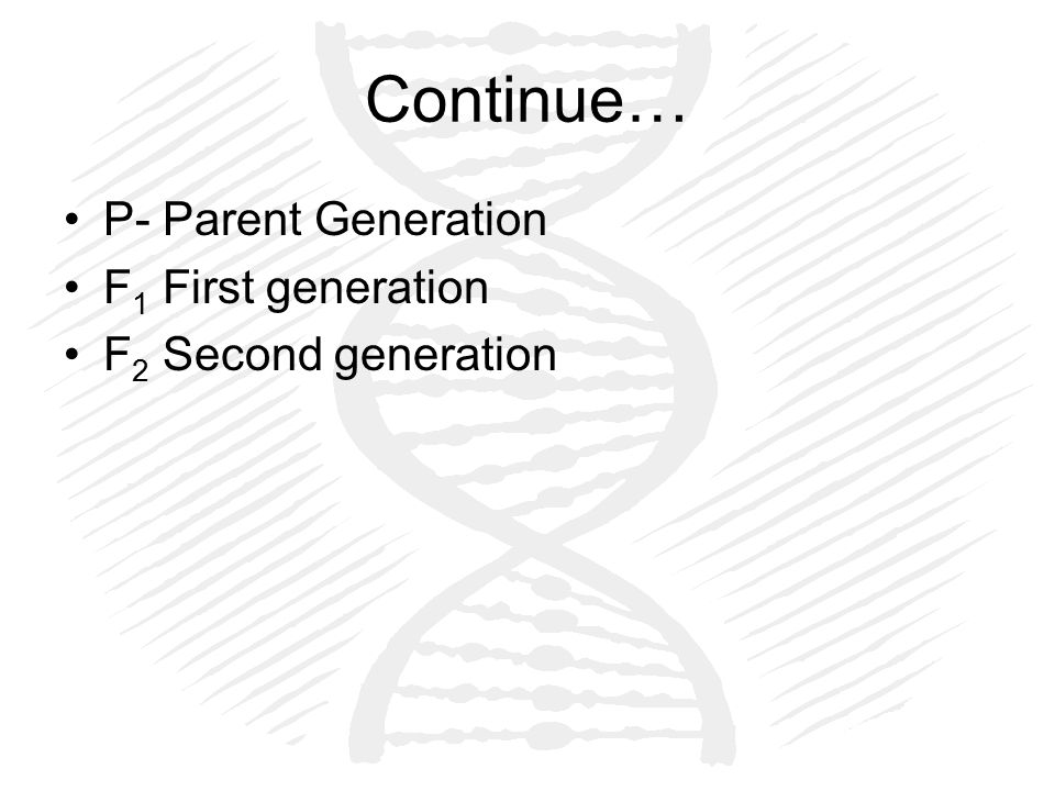 Continue… P- Parent Generation F 1 First generation F 2 Second generation