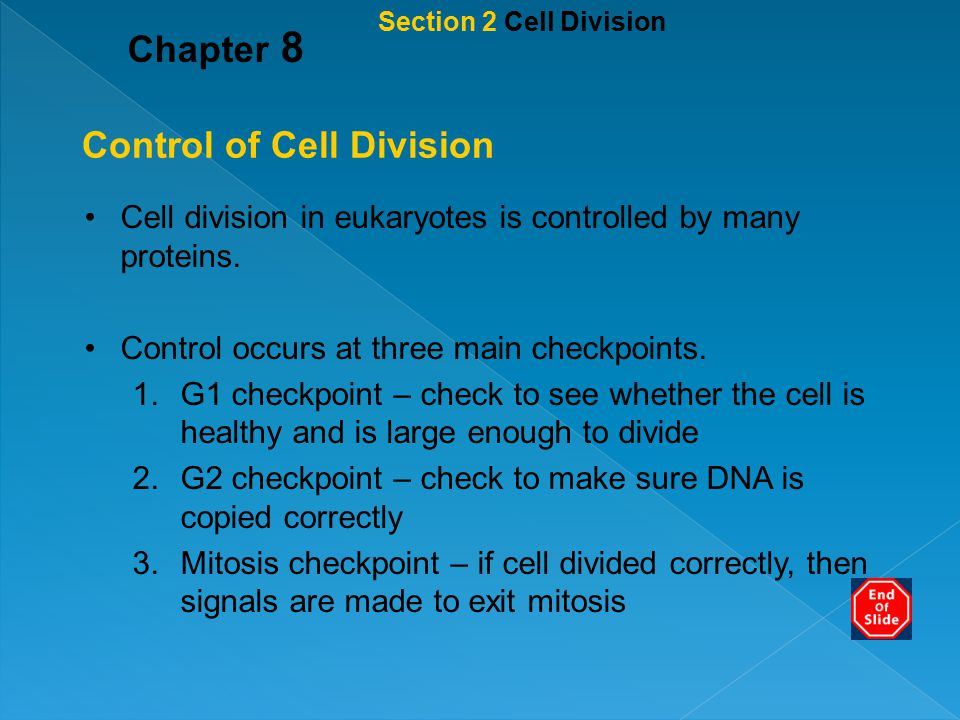 Section 2 Cell Division Chapter 8 Control of Cell Division Cell division in eukaryotes is controlled by many proteins. Control occurs at three main ch