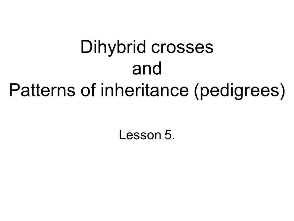 Dihybrid crosses and Patterns of inheritance (pedigrees) Lesson 5.