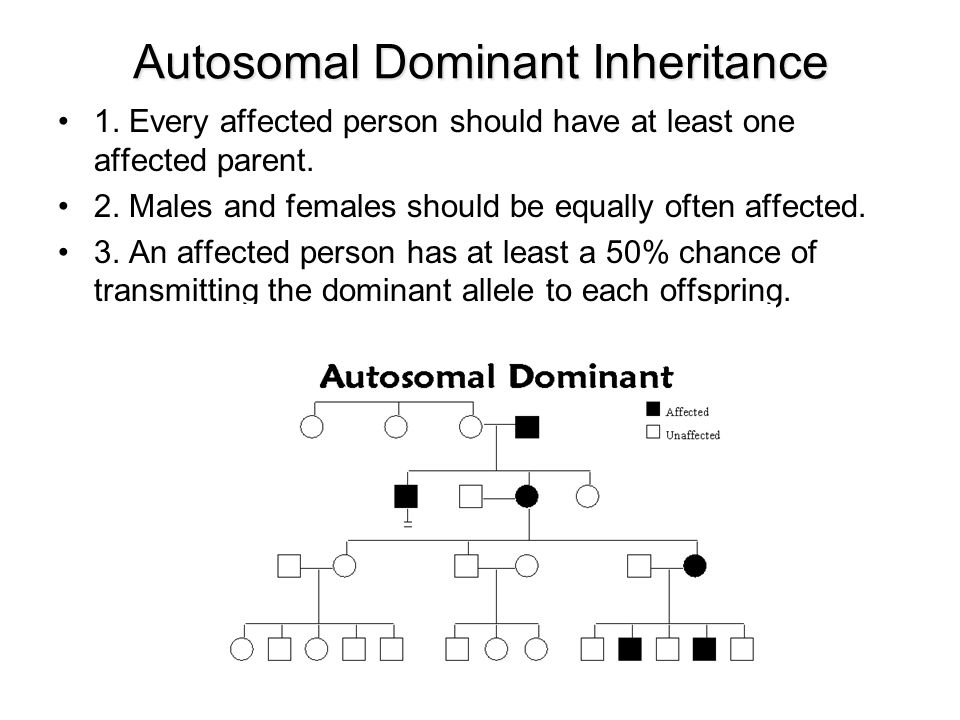 Autosomal Dominant Inheritance 1. Every affected person should have at least one affected parent. 2. Males and females should be equally often affecte