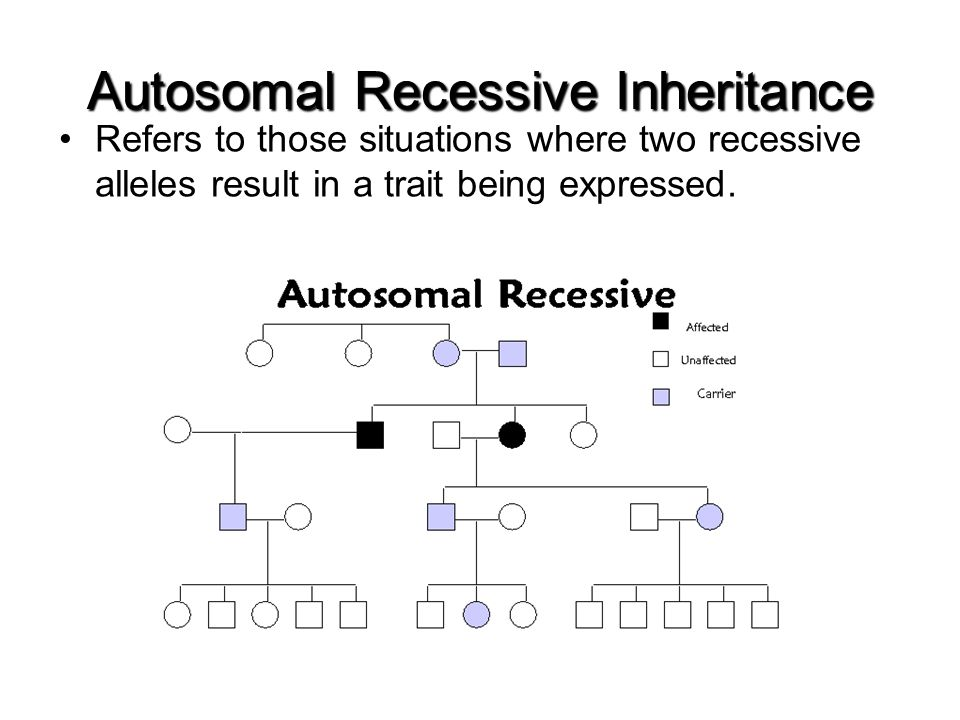 Autosomal Recessive Inheritance Refers to those situations where two recessive alleles result in a trait being expressed.