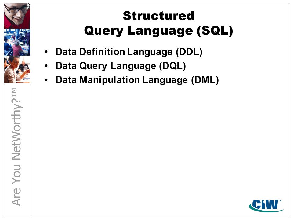 Structured Query Language (SQL) Data Definition Language (DDL) Data Query Language (DQL) Data Manipulation Language (DML)