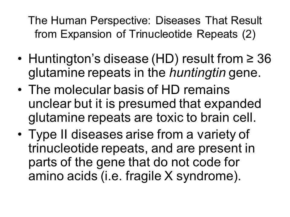 The Human Perspective: Diseases That Result from Expansion of Trinucleotide Repeats (2) Huntington's disease (HD) result from ≥ 36 glutamine repeats in the huntingtin gene.
