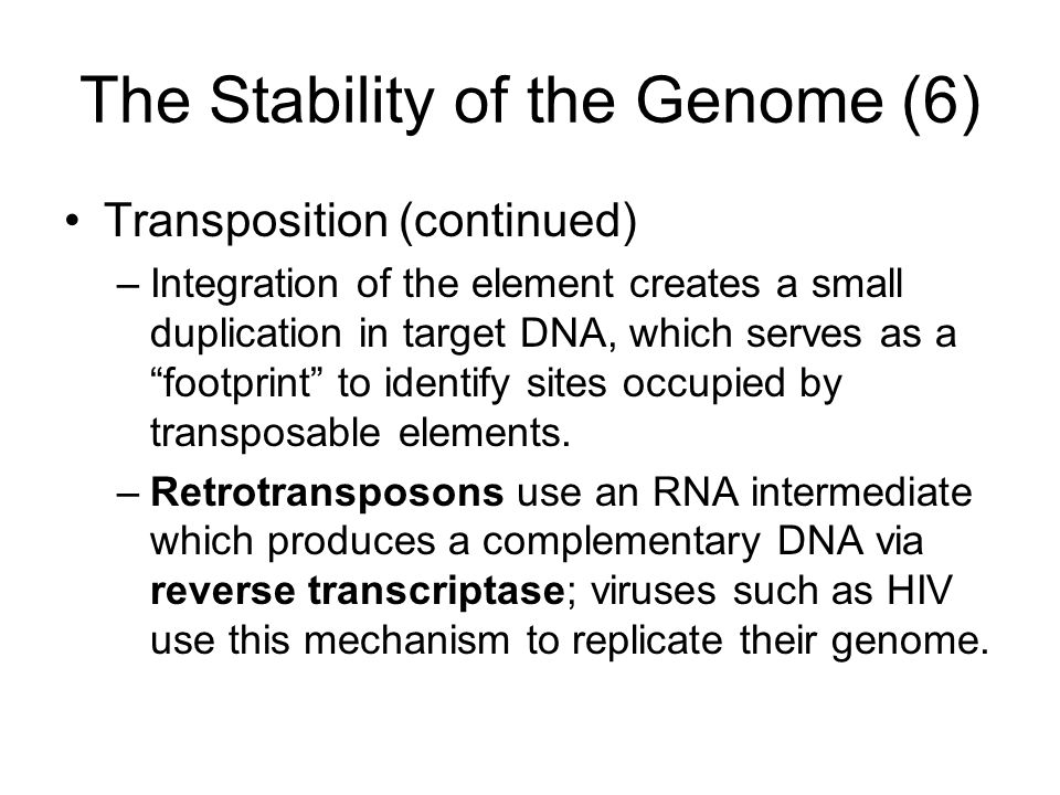 The Stability of the Genome (6) Transposition (continued) –Integration of the element creates a small duplication in target DNA, which serves as a footprint to identify sites occupied by transposable elements.