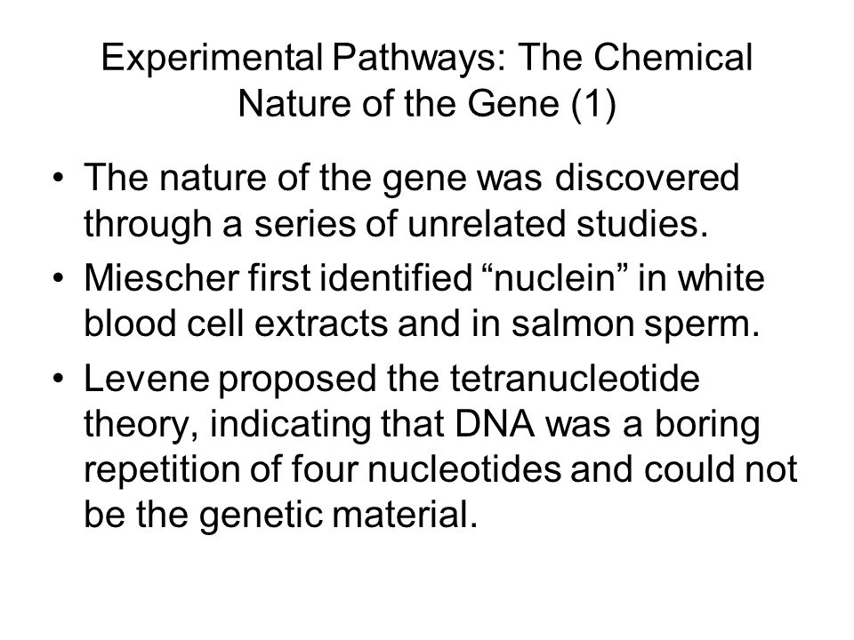Experimental Pathways: The Chemical Nature of the Gene (1) The nature of the gene was discovered through a series of unrelated studies.