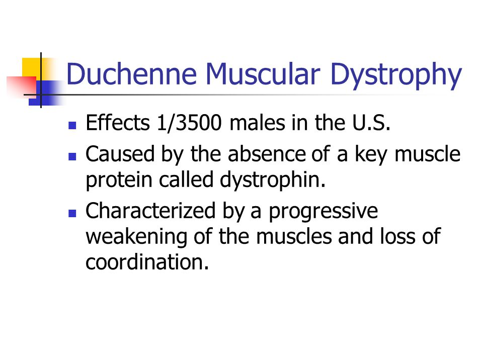Duchenne Muscular Dystrophy Effects 1/3500 males in the U.S. Caused by the absence of a key muscle protein called dystrophin. Characterized by a progr
