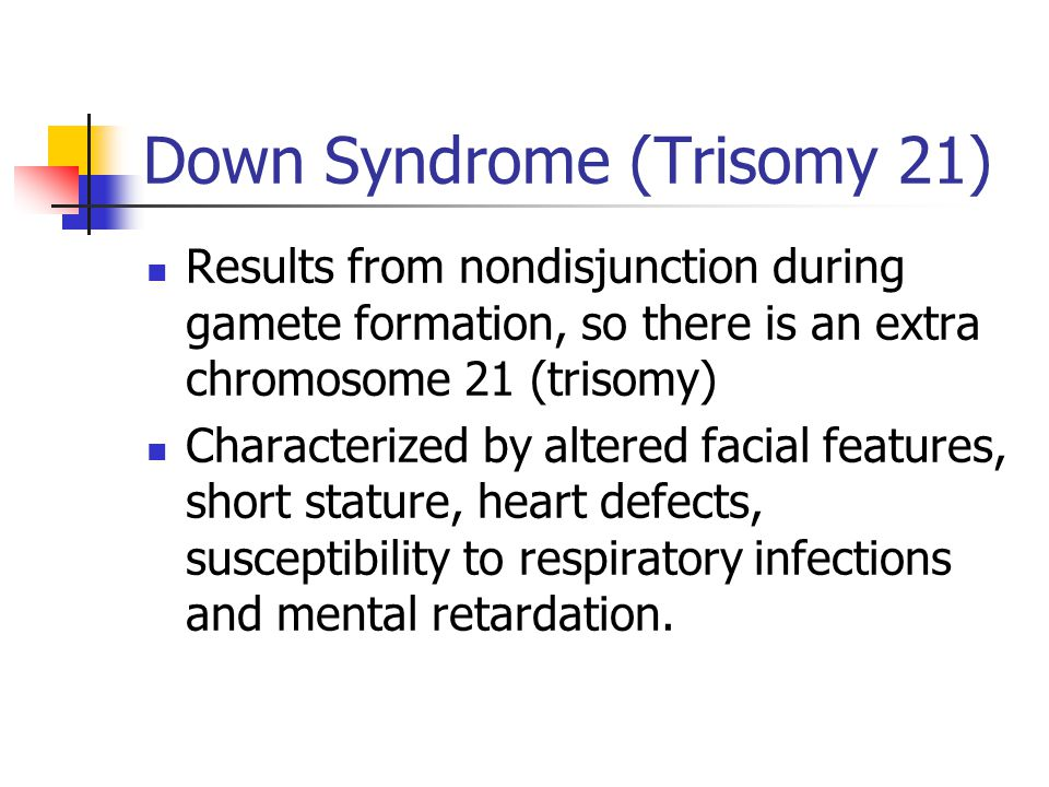 Down Syndrome (Trisomy 21) Results from nondisjunction during gamete formation, so there is an extra chromosome 21 (trisomy) Characterized by altered