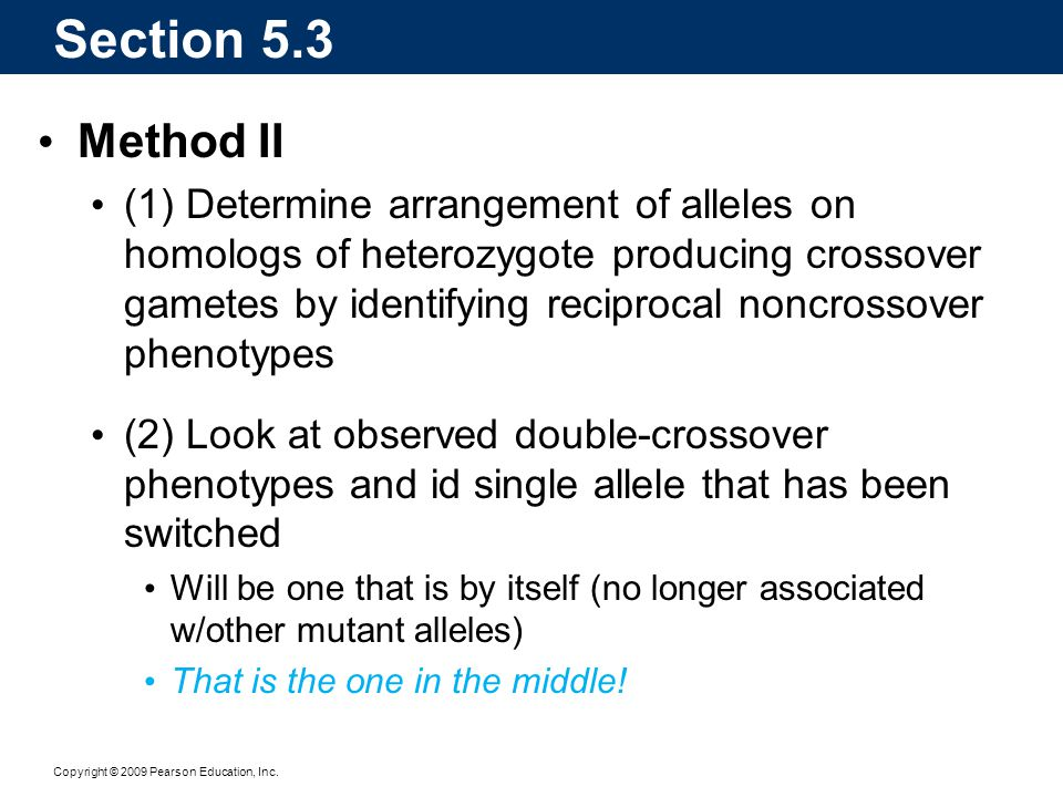 Copyright © 2009 Pearson Education, Inc. Section 5.3 Method II (1) Determine arrangement of alleles on homologs of heterozygote producing crossover ga