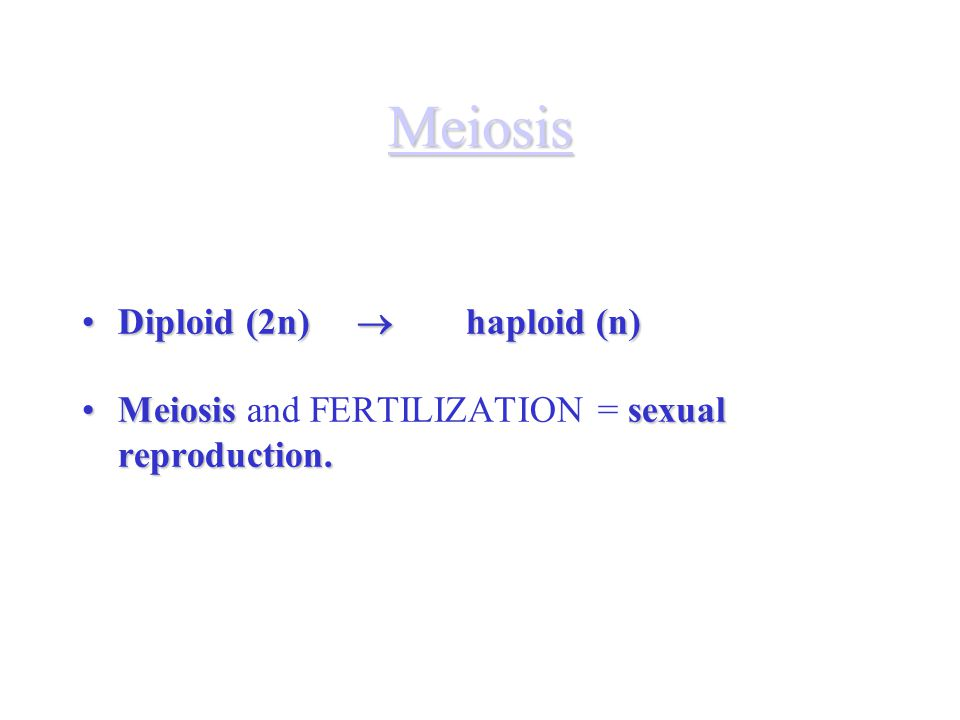 Meiosis Diploid (2n)  haploid (n)Diploid (2n)  haploid (n) Meiosissexual reproduction.Meiosis and FERTILIZATION = sexual reproduction.