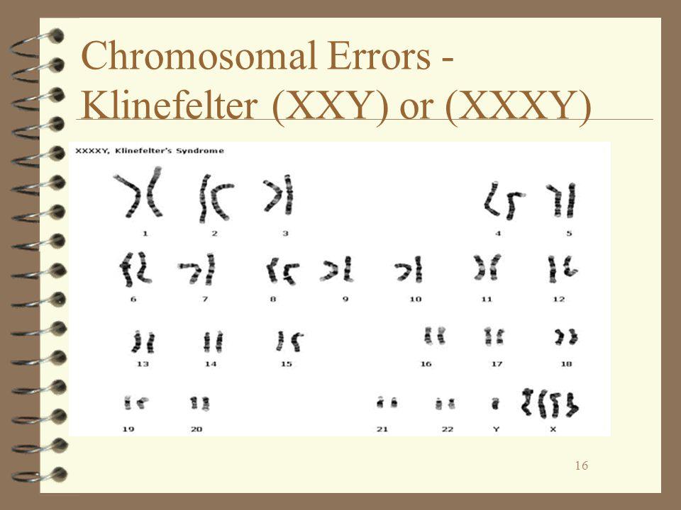 16 Chromosomal Errors - Klinefelter (XXY) or (XXXY) 16