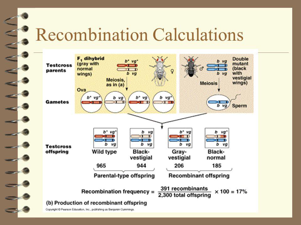 9 Recombination Calculations 9