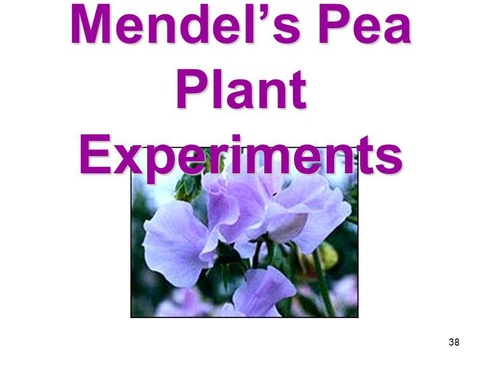 37 Genes and Environment Determine Characteristics