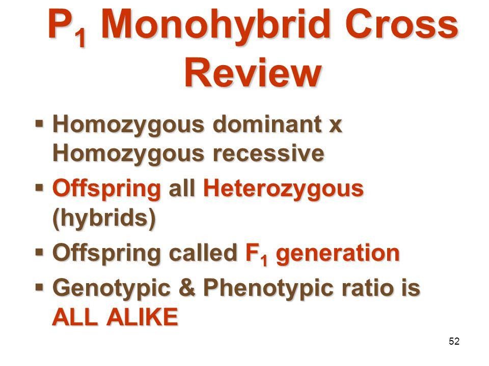 51 Trait: Seed ShapeTrait: Seed Shape Alleles: R – Roundr – WrinkledAlleles: R – Roundr – Wrinkled Cross: Round seeds x Wrinkled seeds: P 1 = RR x rrC