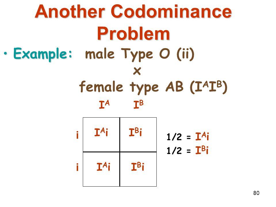 79 Codominance Problem Example:homozygous male Type B (I B I B ) x heterozygous female Type A (I A i) IAIBIAIB IBiIBi IAIBIAIB IBiIBi 1/2 = I A I B 1/
