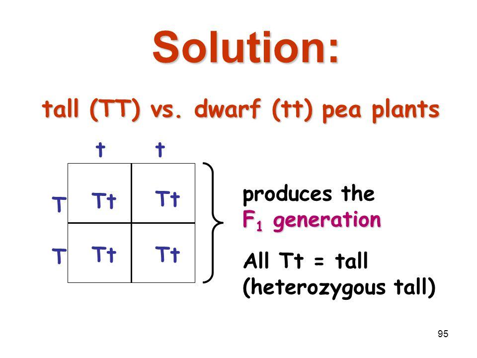 94 Breed the P 1 generation tall (TT) x dwarf (tt) pea plantstall (TT) x dwarf (tt) pea plants T T tt