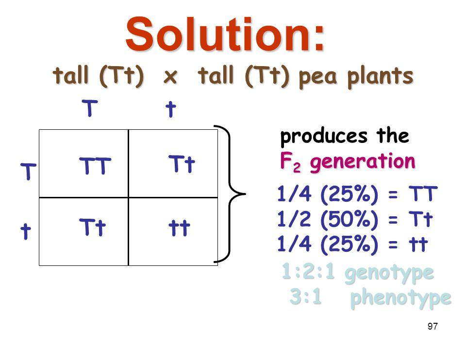 96 Breed the F 1 generation tall (Tt) vs. tall (Tt) pea plantstall (Tt) vs. tall (Tt) pea plants T t Tt