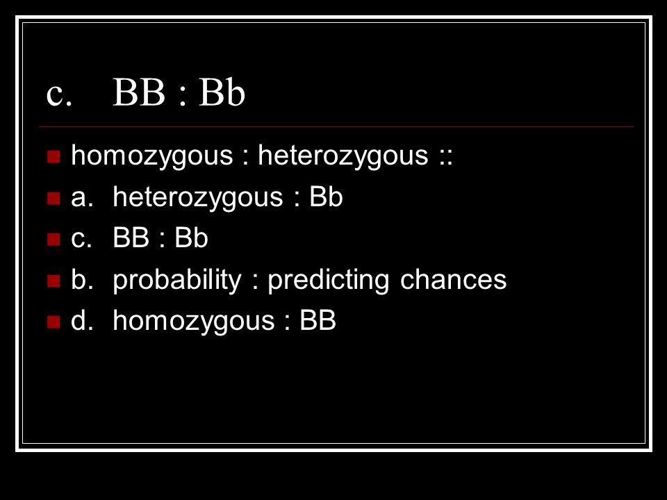 c.BB : Bb homozygous : heterozygous :: a.heterozygous : Bb c.BB : Bb b.probability : predicting chances d.homozygous : BB