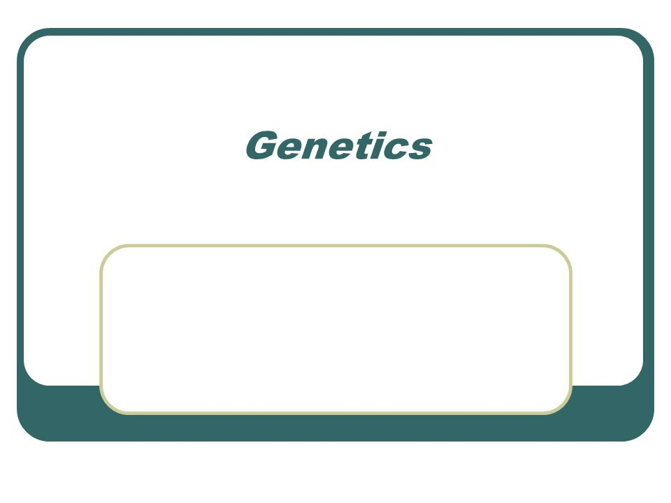 What EXACTLY is a gene.