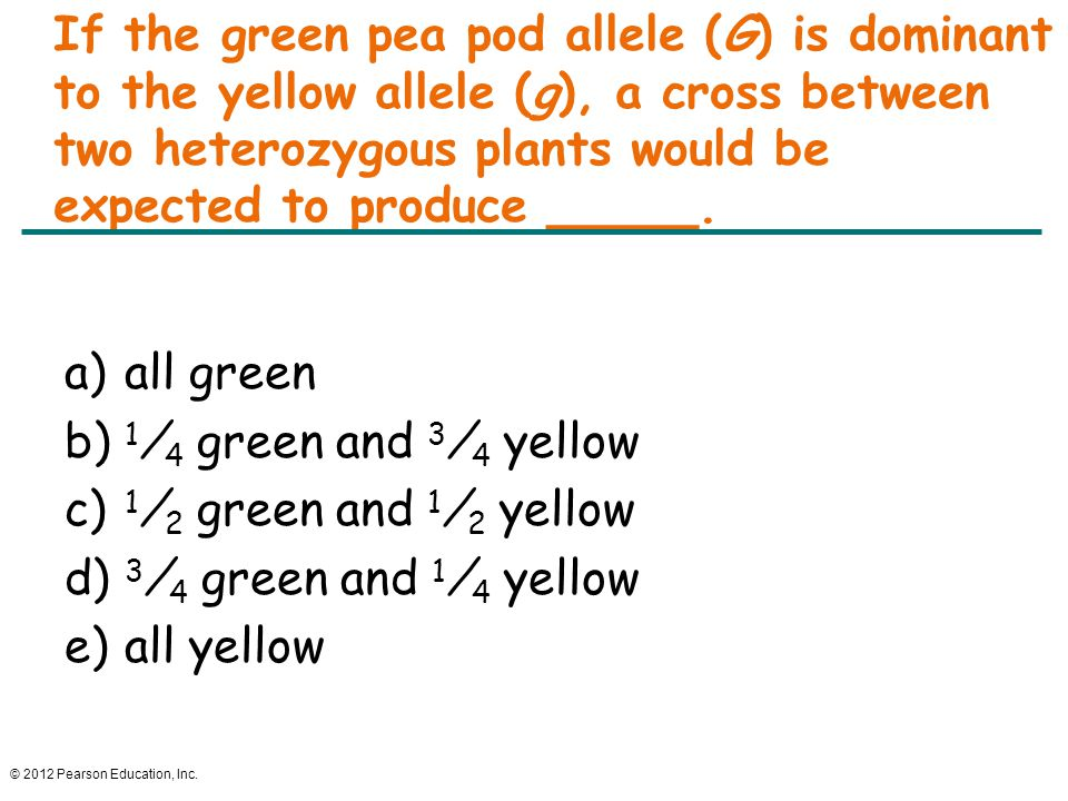 © 2012 Pearson Education, Inc. If the green pea pod allele (G) is dominant to the yellow allele (g), a cross between two heterozygous plants would be