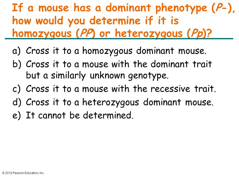 © 2012 Pearson Education, Inc. If a mouse has a dominant phenotype (P-), how would you determine if it is homozygous (PP) or heterozygous (Pp)? a)Cros