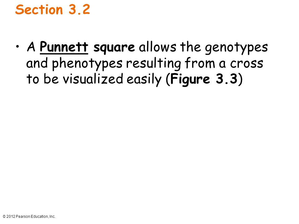 © 2012 Pearson Education, Inc. Section 3.2 A Punnett square allows the genotypes and phenotypes resulting from a cross to be visualized easily (Figure