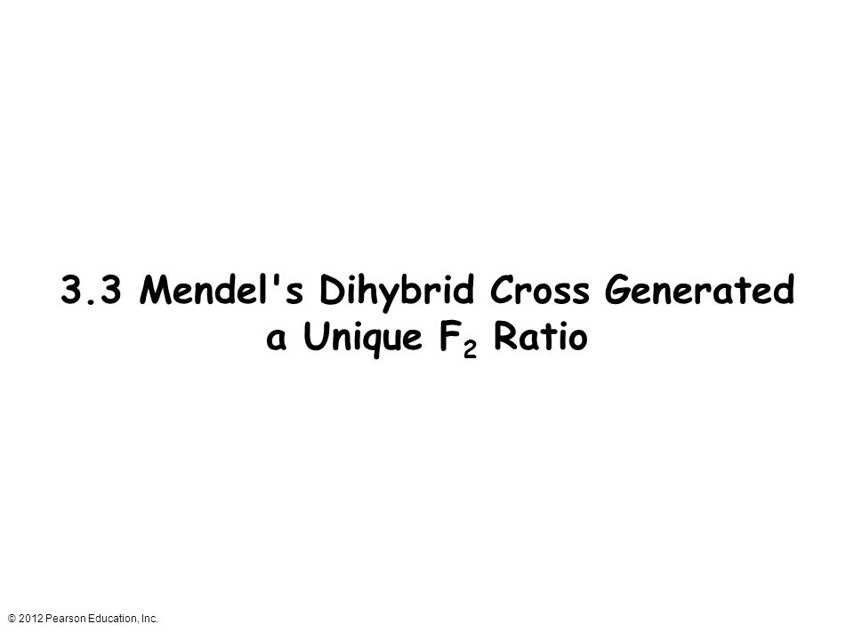 © 2012 Pearson Education, Inc. 3.3 Mendel's Dihybrid Cross Generated a Unique F 2 Ratio
