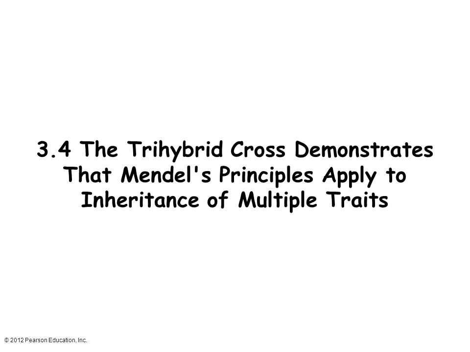 © 2012 Pearson Education, Inc. 3.4 The Trihybrid Cross Demonstrates That Mendel's Principles Apply to Inheritance of Multiple Traits
