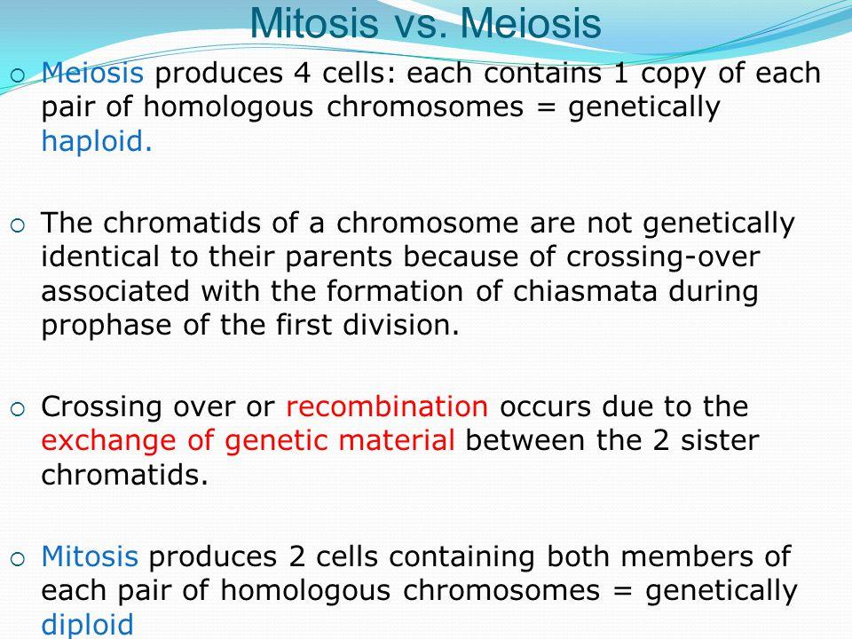 Mitosis vs.