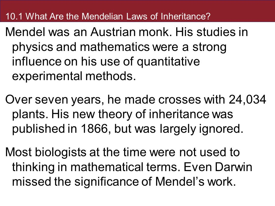 10.1 What Are the Mendelian Laws of Inheritance. Mendel was an Austrian monk.