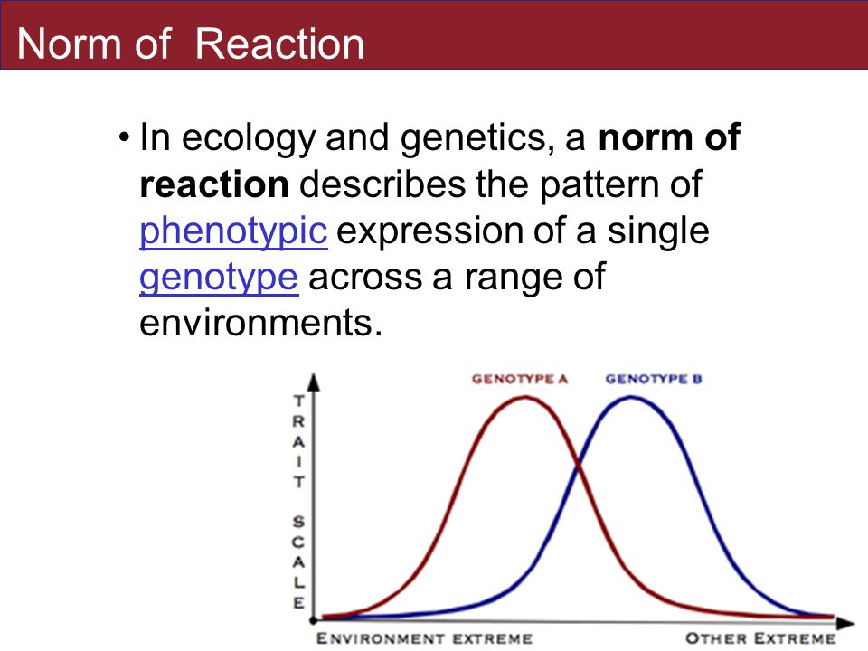 Norm of Reaction In ecology and genetics, a norm of reaction describes the pattern of phenotypic expression of a single genotype across a range of environments.