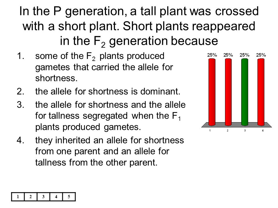 12345 In the P generation, a tall plant was crossed with a short plant. Short plants reappeared in the F 2 generation because 1.some of the F 2 plants